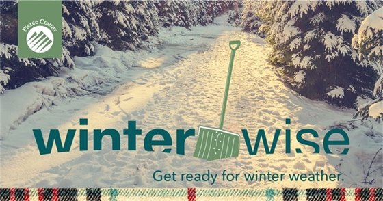Winter Wise banner, shovel in the snow along a road covered in snow, trees with snow cover lining road. Link to Public Works Winter Wise webpage