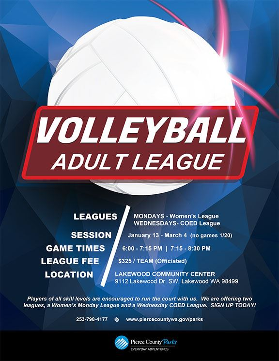image of Volleyball League flyer 2020