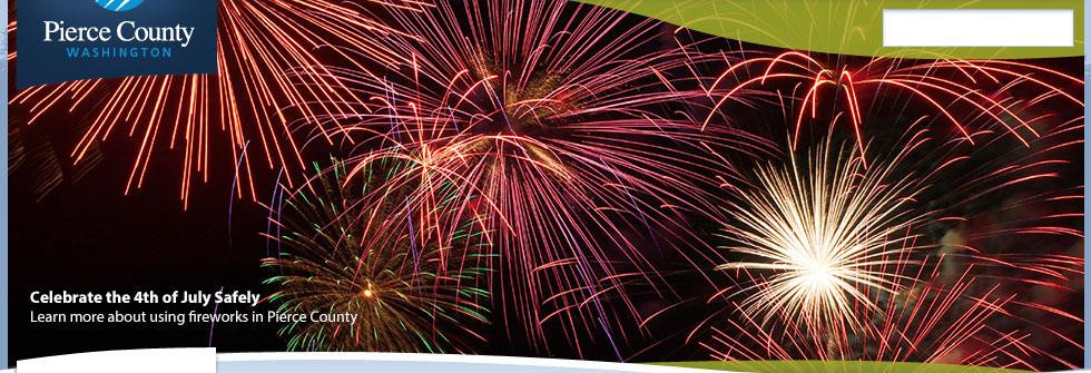 Fireworks- What you need to know to Celebrate Safely